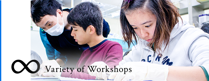 Variety of Workshops